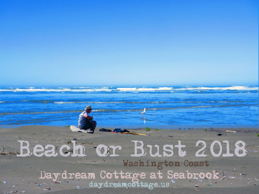 Beach or Bust 2018